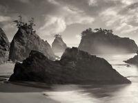 Dennis Frates (Seastack Beach) Canvas Print New
