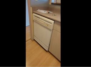 Dish washer, freezer, stove oven. All in one.