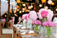 Day Of Wedding/Event Coordination Service