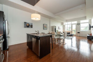 Trendy 2 bedrooms and 1 Bath condo with park view and 12 feet ce