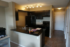 Brand new two bedroom condo locate at SW Edmonton