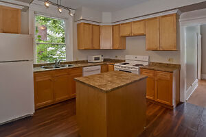 Updated Duplex in South London London Ontario image 4
