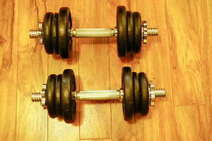 York Dumbbell Set with total of ~50 lbs of weight