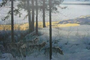 Edge of Night -Timber wolves robert bateman Framed