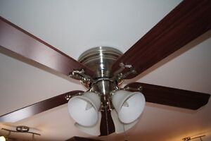 Hunter Ceiling Fan