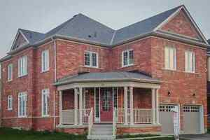 New 4 bed/4 bath in Bradford Oct 1.