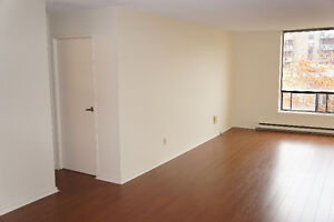 South End Renovated 1 Bedroom! Best Price & Location!