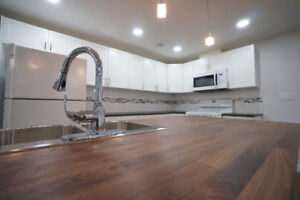 Definitely NOT A Dungeon!!Bright-Modern-MILLWOODS-2RM LEGAL BSM2