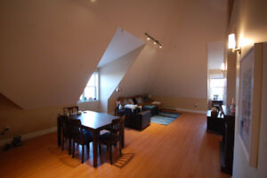 Massive 1 Bedroom Apartment + two bathrooms - Downtown Halifax