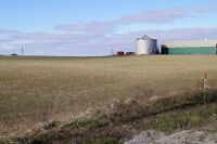 Farmland and Buildings for Sale