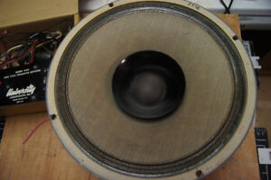 One Goodman Axiom 100 woofer and horn with crossover.