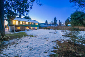 Fantastic House in West Coquitlam (Downstairs Only) for Rent