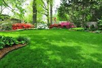 Landscaping for fair pricing!