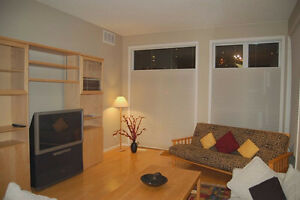 Furnished top floor condo with river valley view!