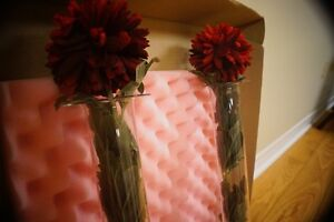 Tortoise shell frame / A Lovely Vase / Tubular glass cylinders West Island Greater Montréal image 3