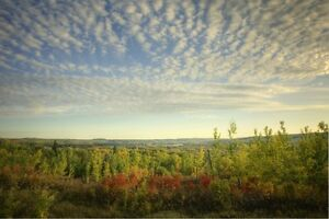PRICE REDUCED!Fully serviced acreages for sale - beautiful view!