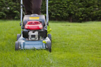 SPRING CLEAN UP AND YARD MAINTENANCE