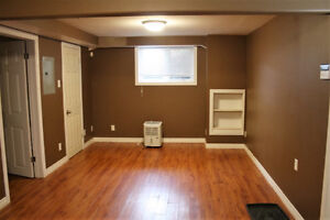 Pet friendly apartment minutes from Stavagner Dr. St. John's Newfoundland image 1