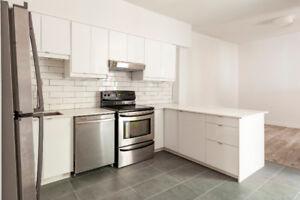 4 1/2 Rénové - 2 chambres - Parc Lafontaine  - Rue Sherbrooke