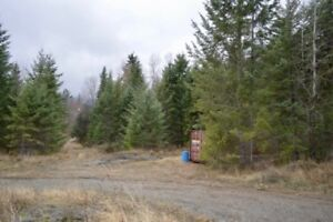 Large 1.25 acre lot in Kaslo BC!