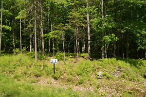 5 Acre Lots for Sale in Beautiful Brome Lake area of Townships West Island Greater Montréal image 6