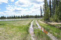 Ross Meadow Ranch / 445 Acres of raw Land! Reduced to sell!