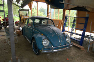 1965 Beetle Registration