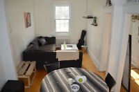 Beautiful 3 1/2 One-bedroom apartment in heart of McGill Ghetto