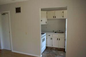 One Bedroom Apt. for rent......located in Myrnam,Alberta..$750 Strathcona County Edmonton Area image 3