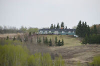 Mature Hillside Acreage! 40 Rolling Acres! Buy or Trade?