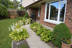 Ranch Style Bungalow in Guelph's West End!! Cambridge Kitchener Area image 2