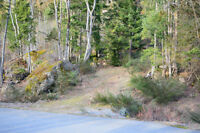 9.8 Acre Lot in Ladysmith
