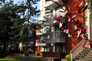 $1534 / 1br - Large 1BR Suite; One Block from Patterson Burnaby