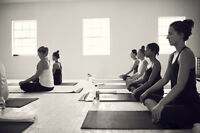 Wanted: Friendly Yogis for Front Desk at Kala Yoga Orangeville