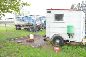 Chicken Tractor with 10x10 caged run