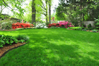 Lawn care, gardening & Snow removal buisness for sale
