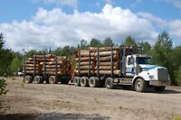 Full-Time Positions Available - Skidder Operator and Topper