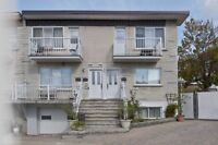 Triplex with 4 apartments for sale