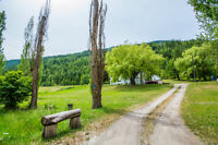 3720 Trinity Valley Road, Enderby - 18.35 Acres