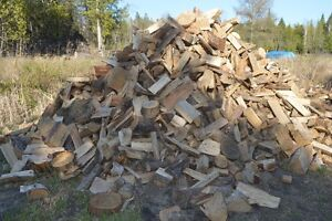 Dry Campfire Nubbins (all hardwood)