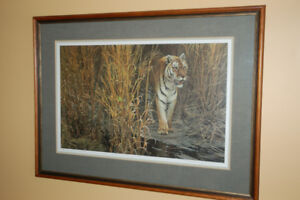 Limited Edition Print Tiger at Dawn by Robert Bateman