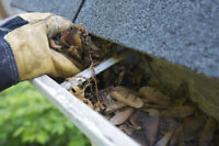 Eavestrough and Downspout Cleaning INSURED