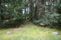 5 Acre Fully Treed Lot