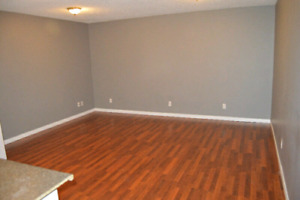 Beautiful 2 Bdrm Bsmnt for rent in Saddleridge AVAIL IMMEDIATELY