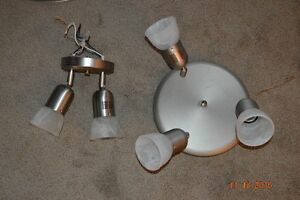 2 and 3 bulb canopy light fixtures