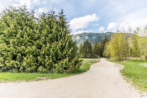 406/422 Finlayson Street, Sicamous - Commercial Acreage Revelstoke British Columbia image 10