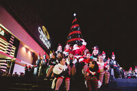 Official Tree Lighting & Santa's Arrival to Highstreet