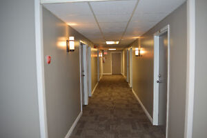 Renovated 1 Bedroom Apartment All Inclusive Available May 1st!