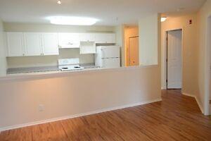new hardwood floor two bedroom Maple Ridge $1200(top floor)