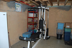 Northern Lights home gym